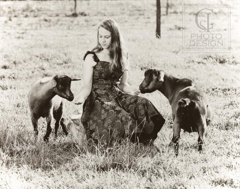 Senior girl with goats in a pasture